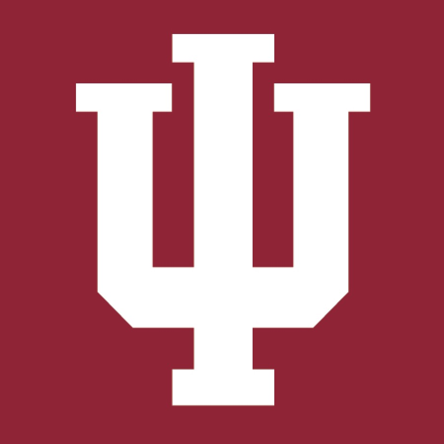 IU Icon